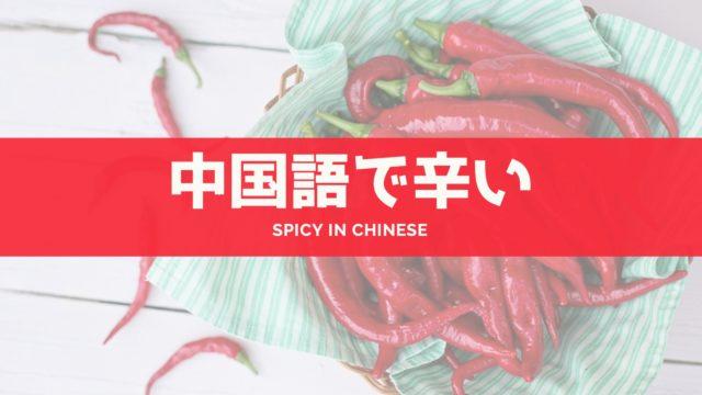中国語 辛い